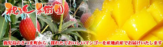 祝迫果樹園ネットショップ